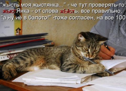 котуч - Ирина Дмитриевна Гаврилова