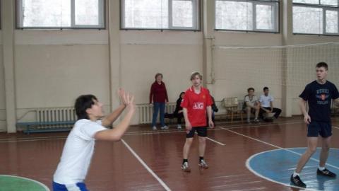 Товарищеская встреча команд -волейбол - ГБОУ СОШ № 346, Комплекс