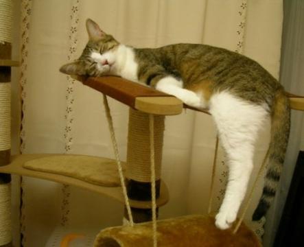 Устал!