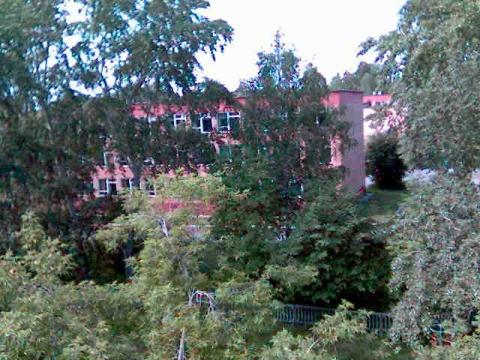 вид из моего окна - Елена Дмитриевна Овсянникова