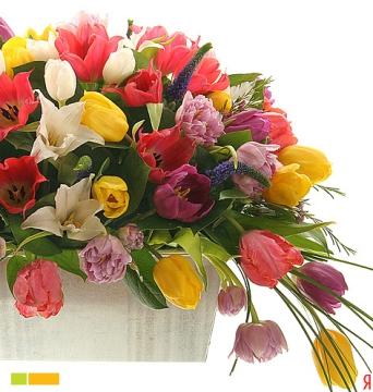 Тюльпаны - Наталия Юрьевна Баталева