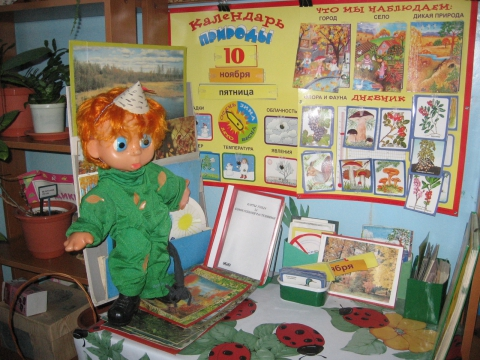 Уголок по экологии в детском саду фото