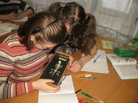 на уроке зоологии - Анастасия Павловна Евдокимова