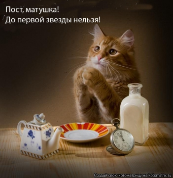 пост - Ирина Руфовна Сорокина