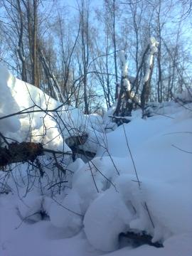Зимушка-зима - Фото сообщество