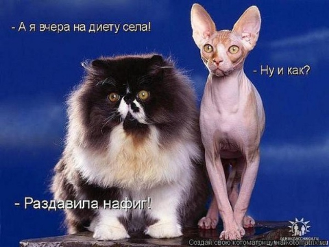 Диета - Ирина Валентиновна Ермакова