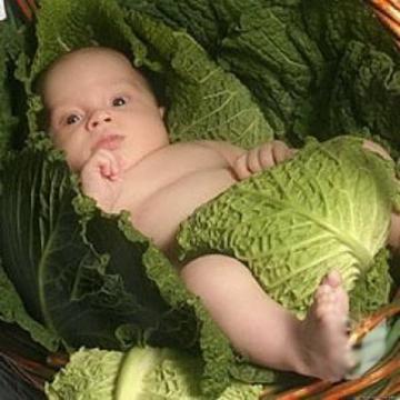 Фото ребенок в капусте