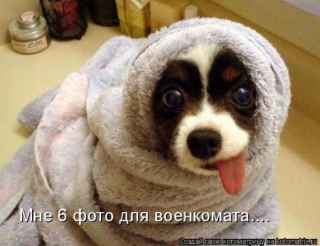 Мерзляк! - Татьяна Дмитриевна Лосева