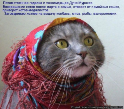 Дуняша... - Татьяна Дмитриевна Лосева