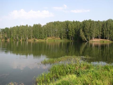 Река в Калужской области - Ольга Владимировна Леонова