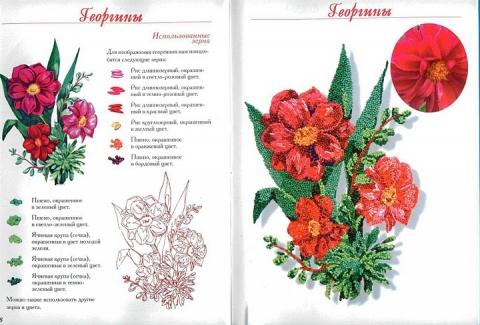17 - Елена Николаевна Шафоростова