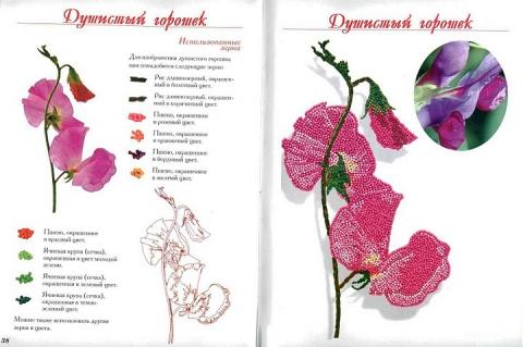 18 - Елена Николаевна Шафоростова