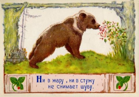 Загадка (медведь) - Галина Викторовна Масленникова