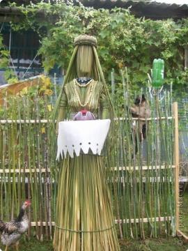 Поделка изделие Плетение плетение из камыша Трава.
