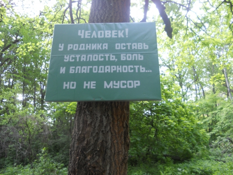 Без названия - Юлия Васильевна Талалаева