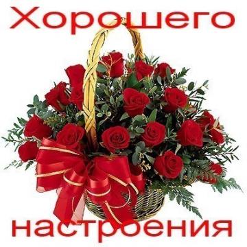 Без названия - Ольга Александровна Котомина