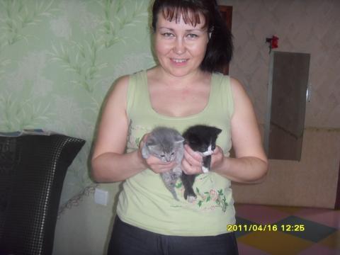 Мама. С котятами Багиры