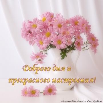 Доброго дня