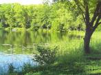 Лесное озеро. Горельский лесхоз - Дмитрий Алексеевич Кулешов