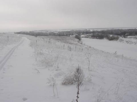 Вид на Красивую Мечу с Косогора зимой - Николай Прокофьевич Скуратов