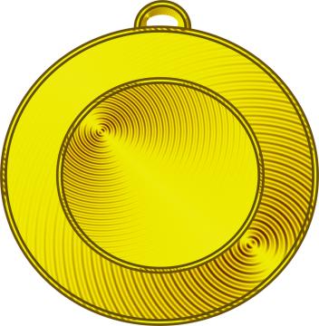 золотая медаль - Егор Игоревич Панов