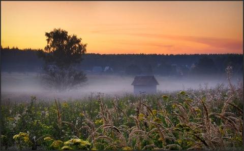 Туман,приникнувший к земле... - Ангелина Васильевна A.B.M.