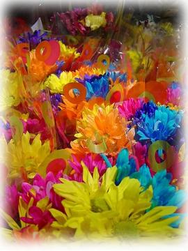 Разноцветье сентября