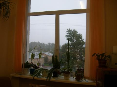 Вид на окно и из окна моего кабинета - Людмила Александровна Чупина