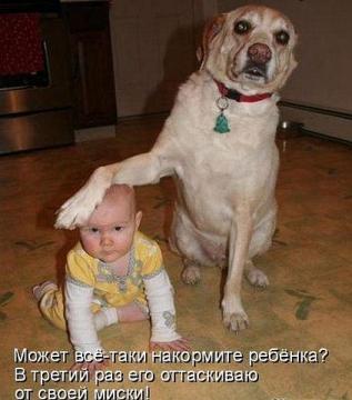 ребенка кормить собираетесь? - Надежда Владимировна Черенева