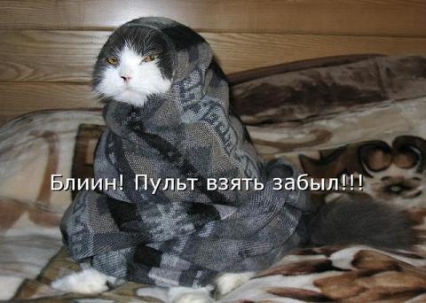 Пуль забыл.. - Надежда Владимировна Черенева