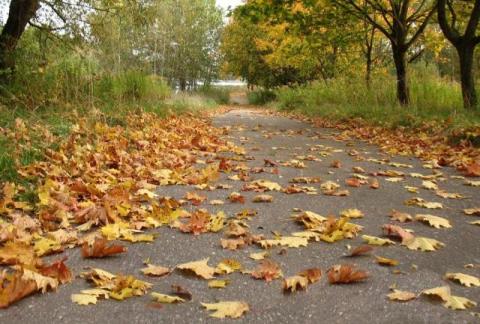 Снова осень...