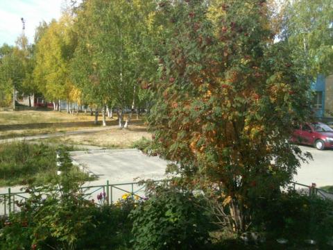 Осень 2011 Югорск
