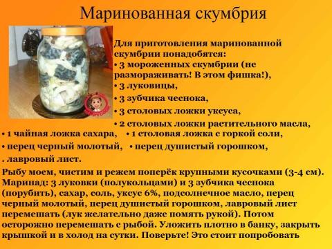 Рецепты скумбрии соленой