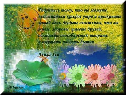 Радуйтесь - Людмила Петровна Михайлова