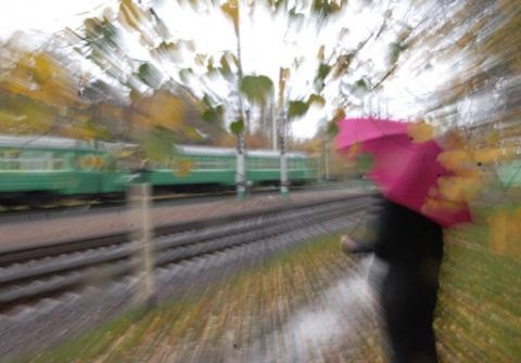 Ноябрьская непогода...