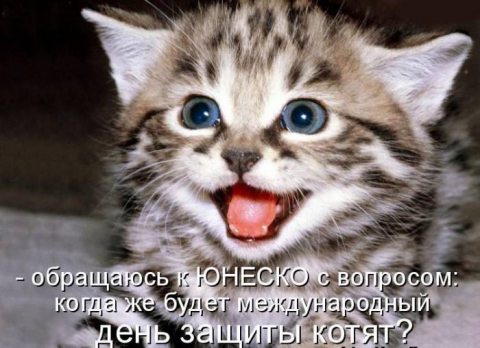 братья меньшие - Наталья Николаевна Спиридонова