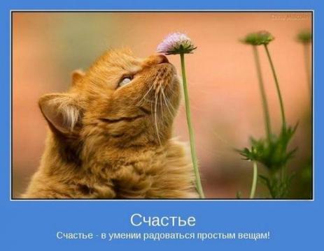 http://img3.proshkolu.ru/content/media/pic/std/3000000/2203000/2202892-77718697f03229f4.jpg