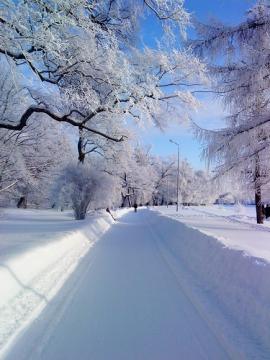 Зима... Красиво.