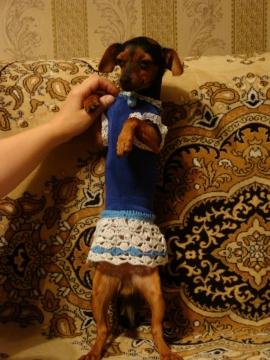 Леди (платье лайкра+вязание крючком) - Надежда Григорьевна Греф