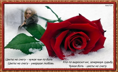 Без названия - Светлана Васильевна Герасименко