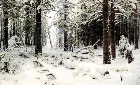 зима - Валентин Пантелеевич Безуглый