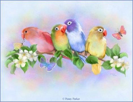 Красивые открытки птиц и цветов