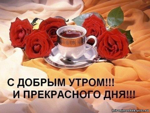 С добрым утром прекрасного дня
