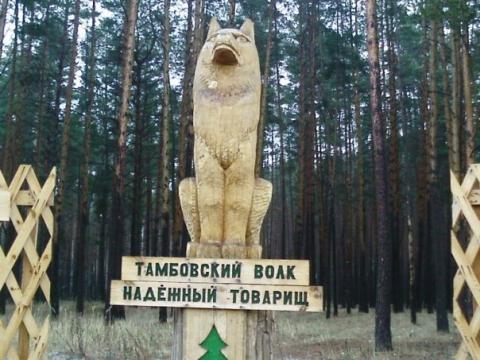 Тамбовский волк - Надежда Анатольевна Дьяченкова