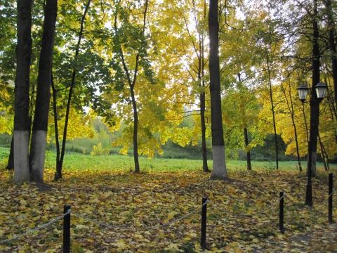 Осень в парке - ммм машина hhh