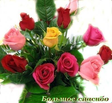 Большое спасибо - Ольга Владимировна Назарова