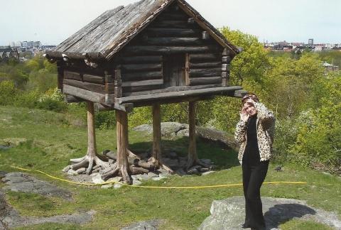 Швеция - Людмила Альбиновна Казанцева
