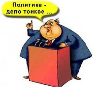 политика - Ольга Сергеевна Теплоухова