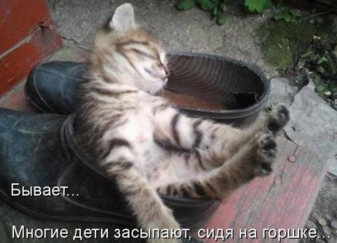 Спать пора - Ольга Владимировна Назарова