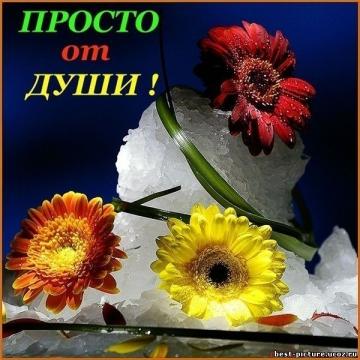 От души! - Ольга Сергеевна Теплоухова